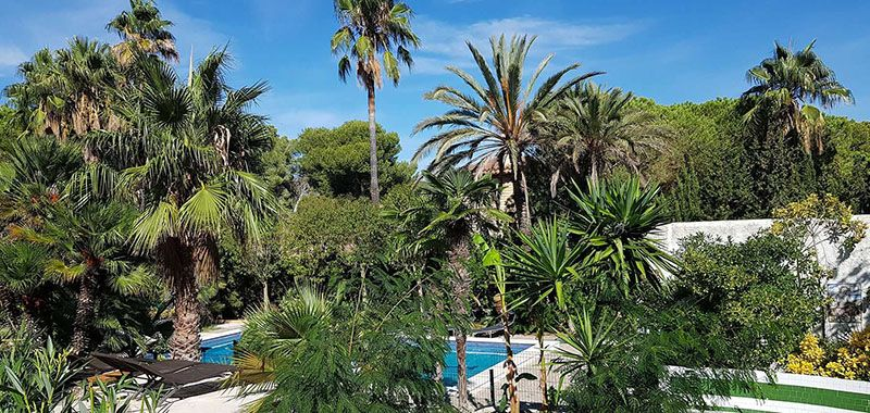nudist swimming pool in a secluded graden at la Casa Dorada